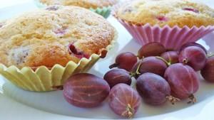 muffins-797821_1280